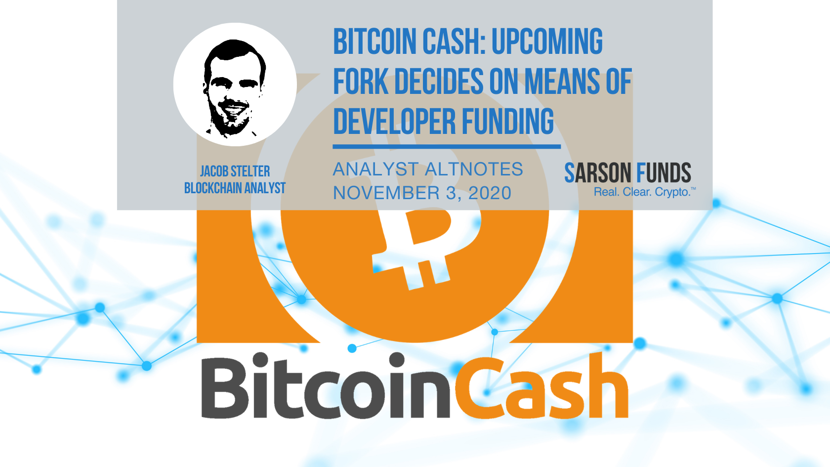Bitcoin Cash Fork Decided On Opinions About Developer Funding